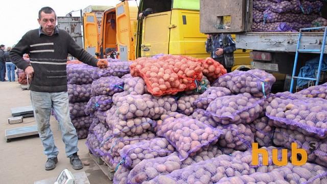 В Украине рекордно подешевела молодая картошка