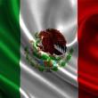 В Мексике из-за коронавируса объявлен режим ЧС
