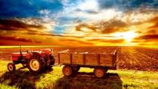 Аграрии нарастили объем производства сельхозпродукции