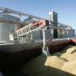 В ЕБА позитивно оценили запуск зернового терминала