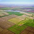 Прокуратура способствовала возврату в госсобственность земли на 30 млн грн