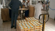 Евросоюзу захотелось больше продуктов из Украины