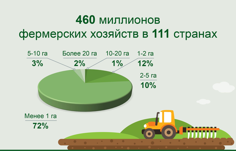 аграрный сектор, фермерские хозяйства, стартап