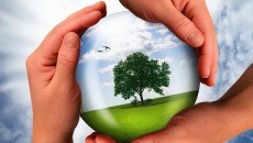 АМКУ определит критерии госпомощи по экологии к марту 2017 года