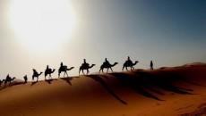 Коронавирус добрался до Саудовской Аравии