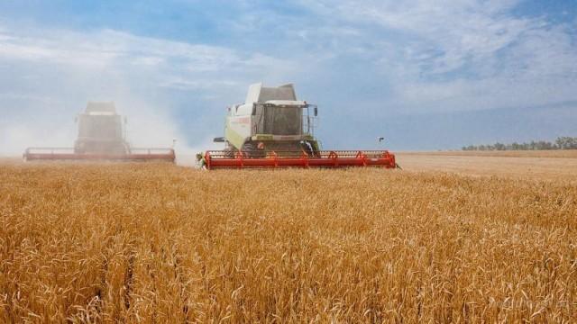 В Николаевской области уже собрано более 1 млн тонн зерна