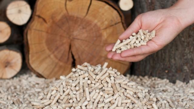 На Львовщине запускают завод по производству топливных гранул