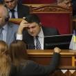 Гройсман об экспорте леса-кругляка: «Украина - не «лесопилка»