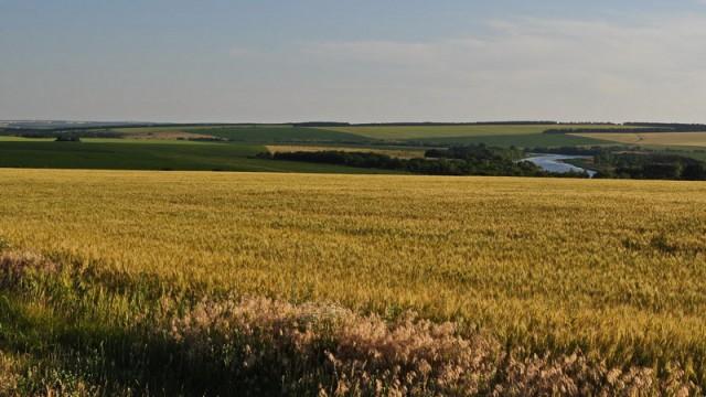 Мораторий на продажу с/х земель рассмотрят в ближайшие дни