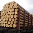 МЭРТ готовится к возможному арбитражу относительно леса-кругляка