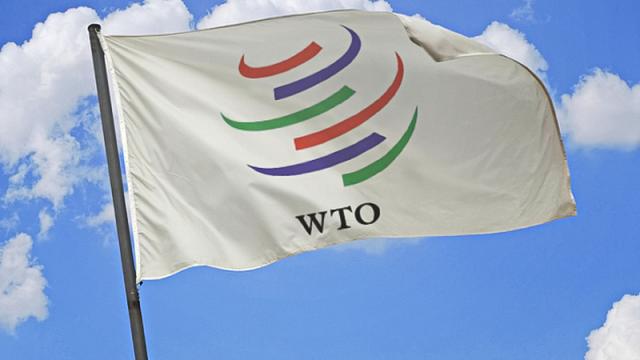 ВТО впервые ударила по России