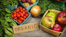 В Украине растет производство органики