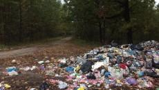 Львовский мусор свезли на стихийную свалку на Волыни