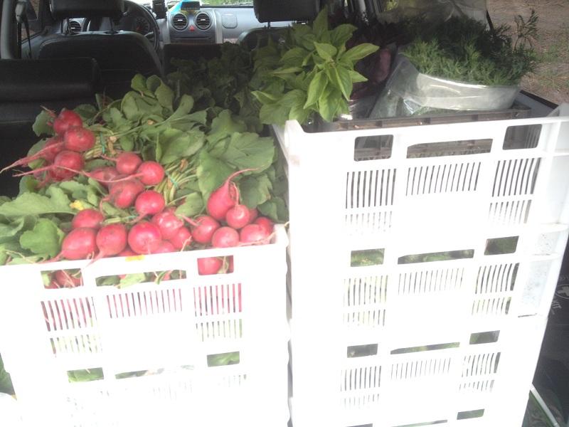 органические продукты, цены на продукты, стартап