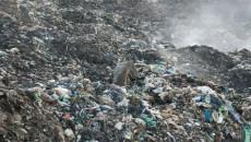 Львовский мусор: ни сжечь, ни переработать