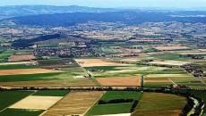Рынок земли предлагают запускать в несколько этапов