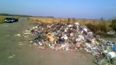 В Житомир и Винницу незаконно свозят львовский мусор