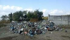 На Житомирщине будут судиться с перевозчиками львовского мусора