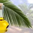 В Украине запретят использовать пальмовое масло
