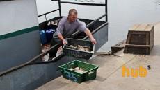 В Госрыбагентстве не подтверждают истощение ресурсов Азовского моря