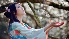Новый сверхтяжелый химэлемент назван в честь Японии