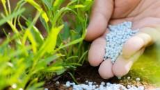 В Ostchem прогнозируют увеличение доли импорта удобрений из РФ до 51%