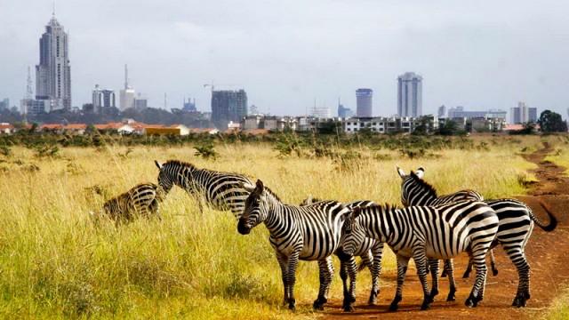 Украинско-кенийский «бизнес-день» прошел в Найроби
