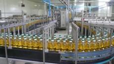 Производство масла выросло на 18%