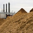 В Золотоноше построят соломенную ТЭС за €40 млн
