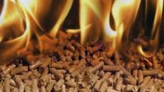 Альтернативное топливо сэкономило Черниговщине 10% газа