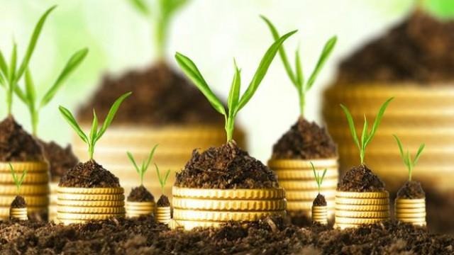 Капитальные инвестиции: агроотрасль в 2 раза быстрее наращивает вложения, чем вся экономика страны (рейтинги)