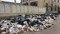 Во Львове продолжают гнить 11 тыс. тонн мусора
