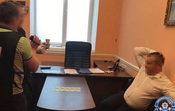 Янтарные войны: в Житомирской области на мзде задержан депутат