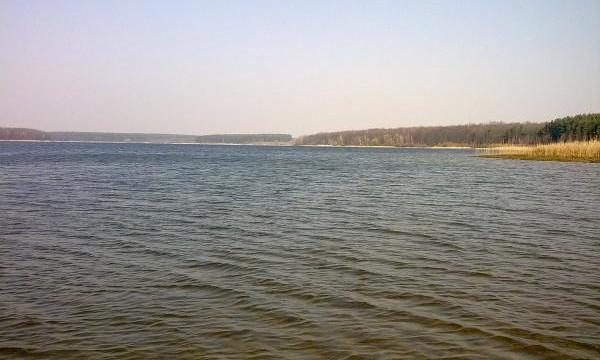 У рыбхоза отобрали уникальное водохранилище площадью 115 га