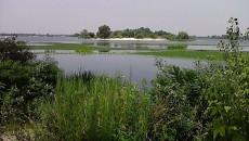 Земли Жукова острова стоимостью 1,4 млрд грн начали возвращать общине Киева