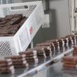 Кондитерская фабрика «Квитень» планирует существенно нарастить свою долю на кондитерском рынке