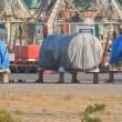 В Siemens открещиваются от поставок крымских турбин