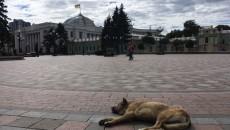 Комитет ВРУ отклонил обращение ГПУ по Полякову