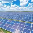 Правительство дало старт инвестированию в возобновляемые источники энергии