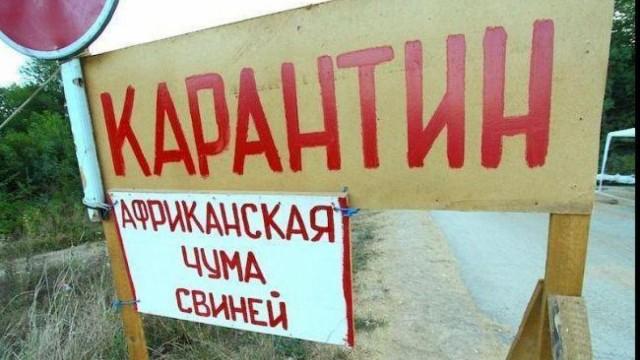 В ЕС не поддерживают строительство Польшей ограждения от АЧС