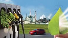 Нидерланды усилят сотрудничество с Украиной в биоэнергетическом секторе