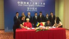 Китайский рынок открылся для украинского подсолнечного шрота и свекольного жома