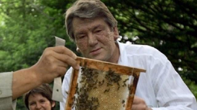 В Украине могут ввести госреестр пасечников