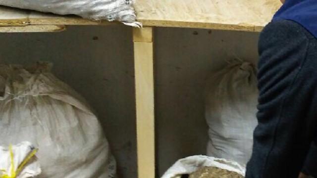 Правоохранители перехватили крупную партию янтаря на 10 млн грн
