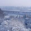 В Киеве ботсад могут отдать столичным чиновникам