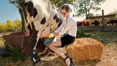 Надои молока достигли 9 млн тонн