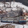 УЗ приостанавливает высадку/посадку пассажиров в Черновицкой и Житомирской областях