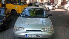 Южанина против авто на еврономерах