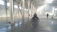 В Житомирской области запускают работу завода по производству семян