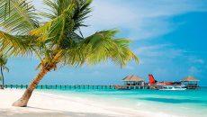 Генсек UNWTO прогнозирует восстановление туризма